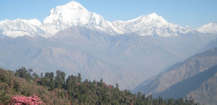 Mt. Dhaulagiri and Tukuche Peak seen from Pun Hill